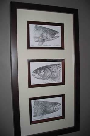 Triple Framed Trout Lithographs